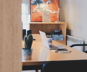 Comment obtenir un contrat de domiciliation en ligne ?